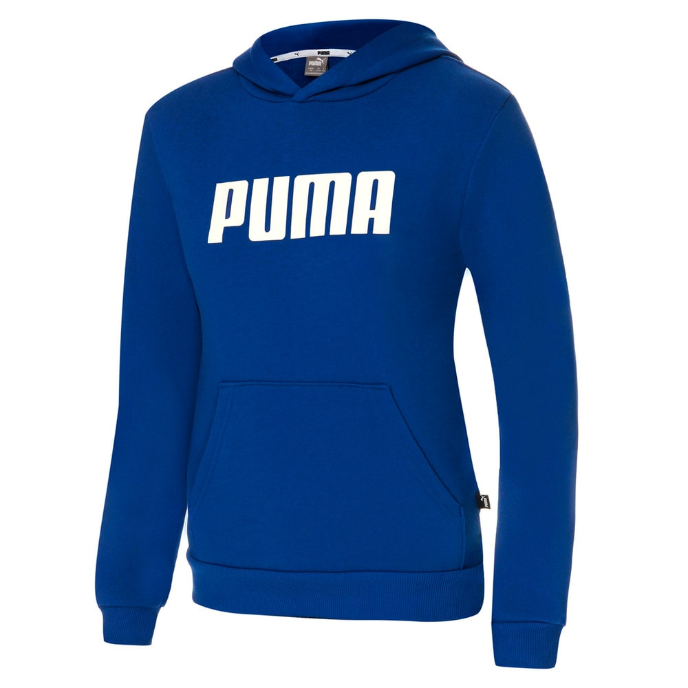 Изображение Puma Толстовка для мальчиков ESS big PUMA Hoody TR #1
