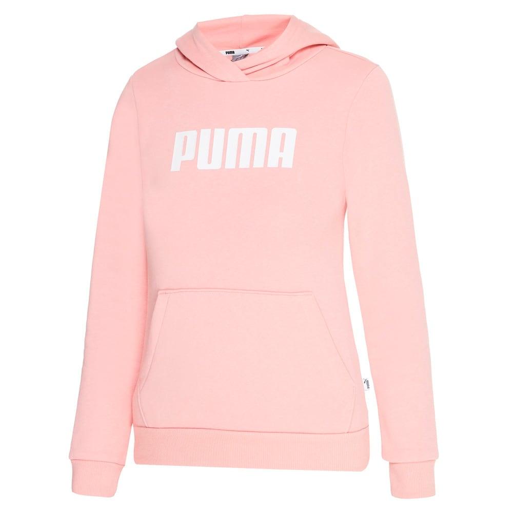 Изображение Puma Толстовка Essentials Fleece Girls' Hoodie #1