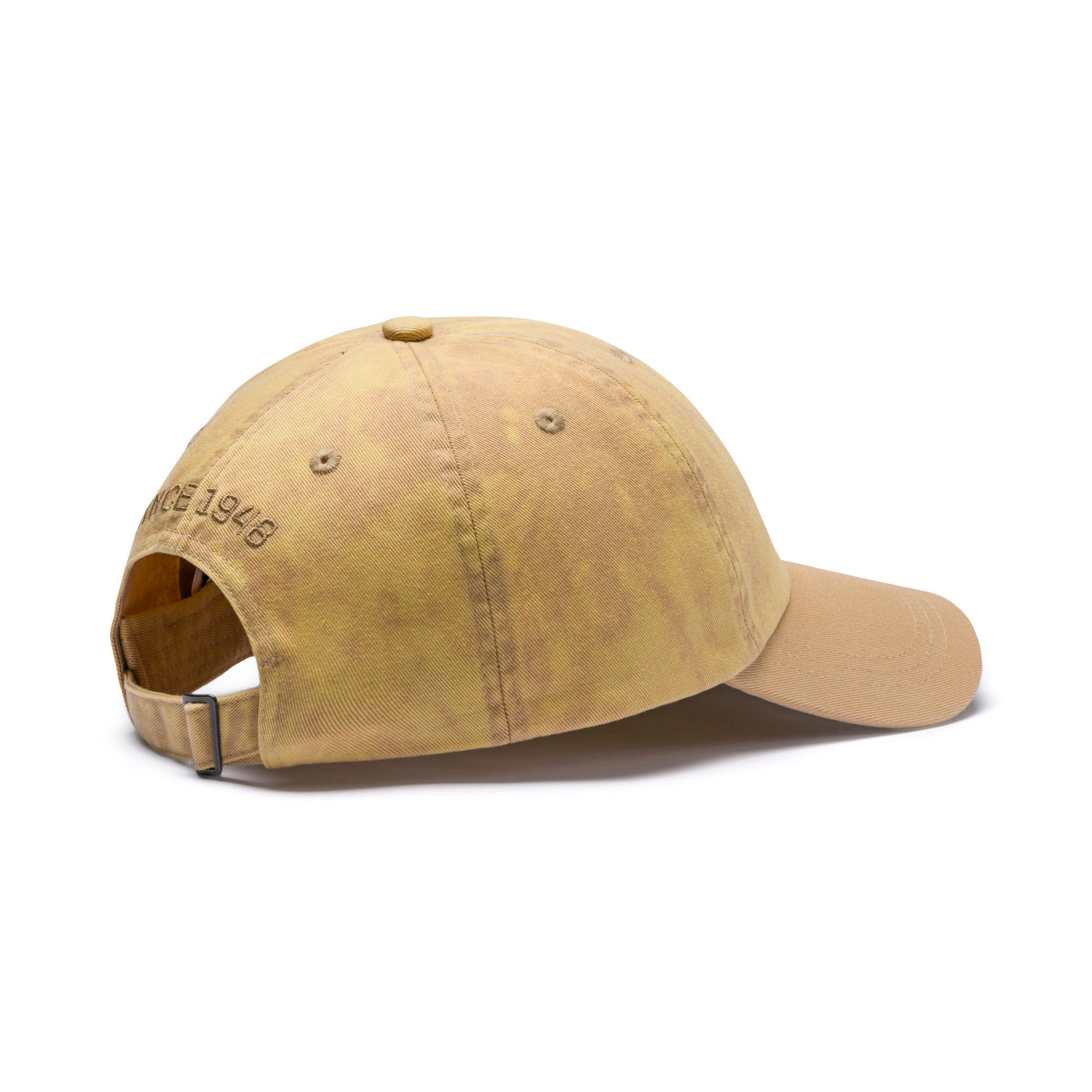ARCHIVE BB cap, Taos Taupe, large