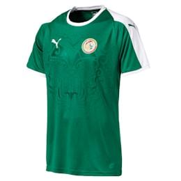 Senegal Men's Away Replica Jersey