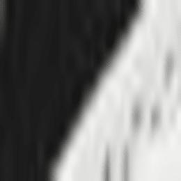 パラメヒコ, black-white, swatch-JPN