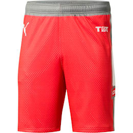 7cf9ccc4 TBT Retro Men's Shorts